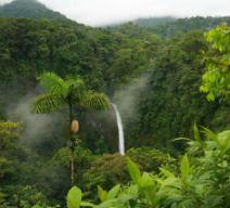 Costa Rica Pure Life