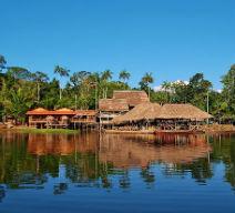 Amazonas Exotic