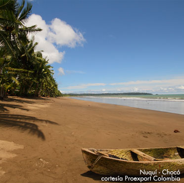 Playas Nuqui Choco Colombia